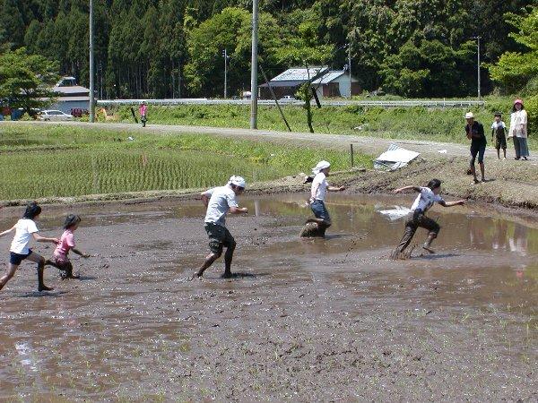 泥んこ競争_c0057390_2337543.jpg