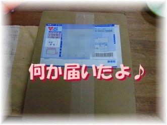 f0039907_8393499.jpg