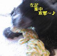 b0073589_2041524.jpg