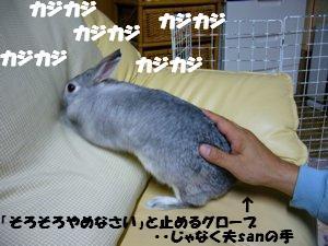 b0081503_17184052.jpg