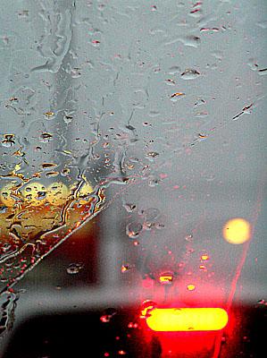 また 雨だ・・・ 2006/5/23-tue_f0031535_1765750.jpg