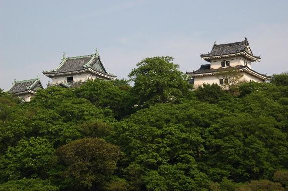 和歌山城  6_b0093754_22354045.jpg