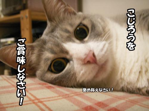 『ご賞味』_b0083267_20285740.jpg