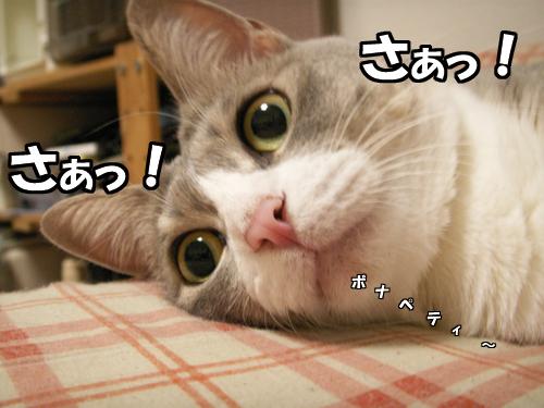 『ご賞味』_b0083267_20311439.jpg