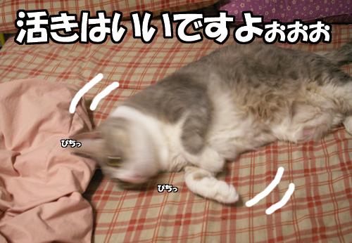 『ご賞味』_b0083267_20325956.jpg