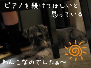 b0075917_1122698.jpg