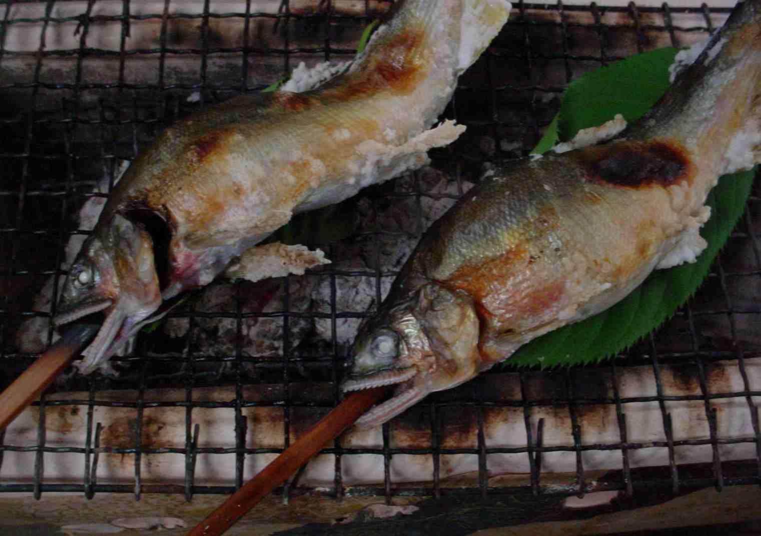 季節のお料理 「鮎の塩焼」_f0040201_2442054.jpg
