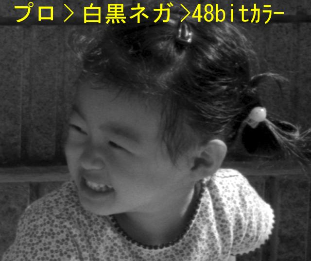 d0039803_14493557.jpg