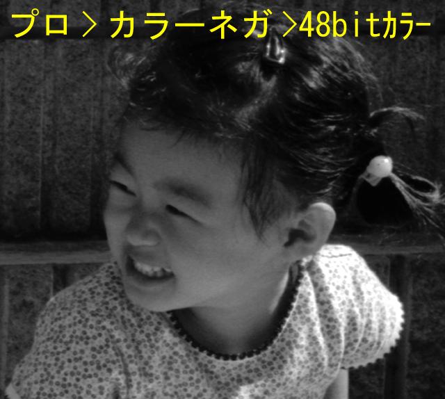 d0039803_14494968.jpg