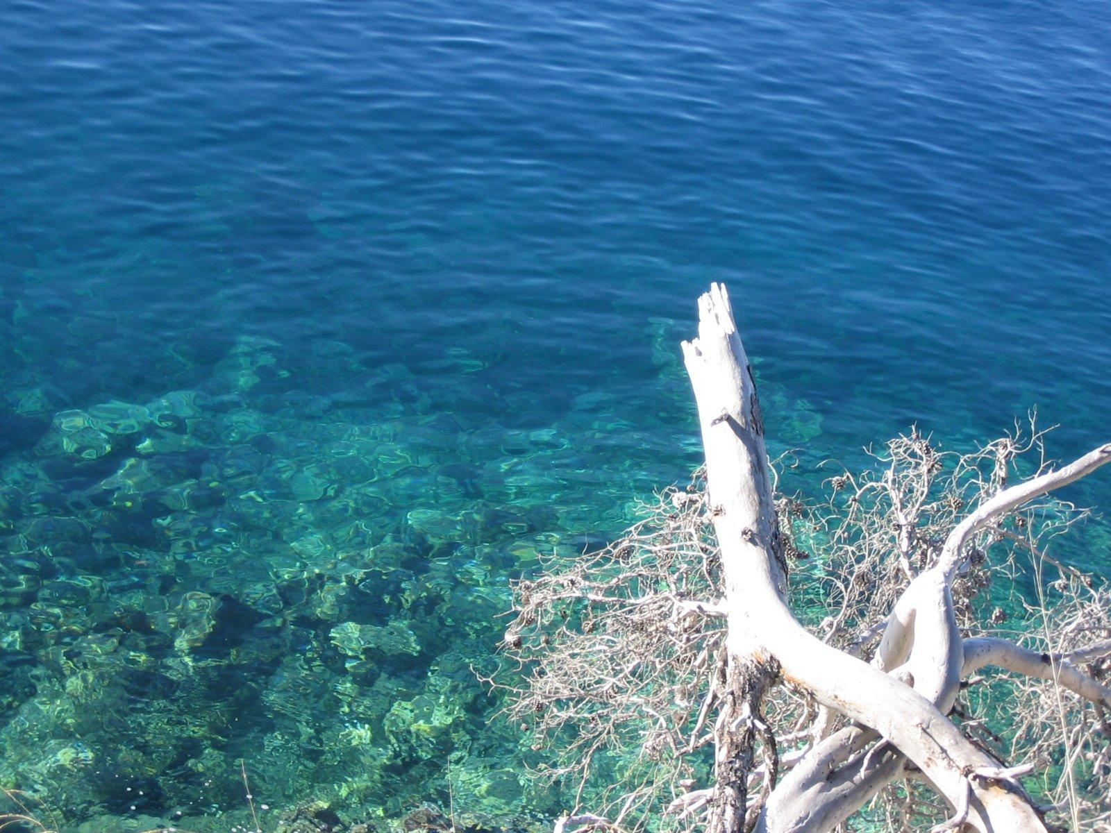 クロアチアの夢_b0106609_7493182.jpg
