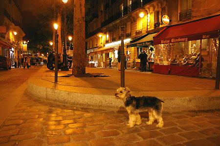 オレンジの光で包まれた、夜のパリをお散歩・・・_c0024345_1157055.jpg