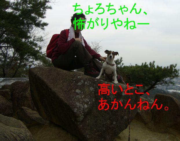 f0053952_12442454.jpg