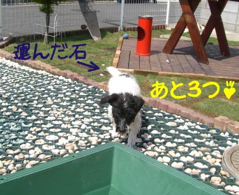 f0055395_010953.jpg