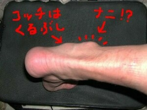 b0056000_14463851.jpg