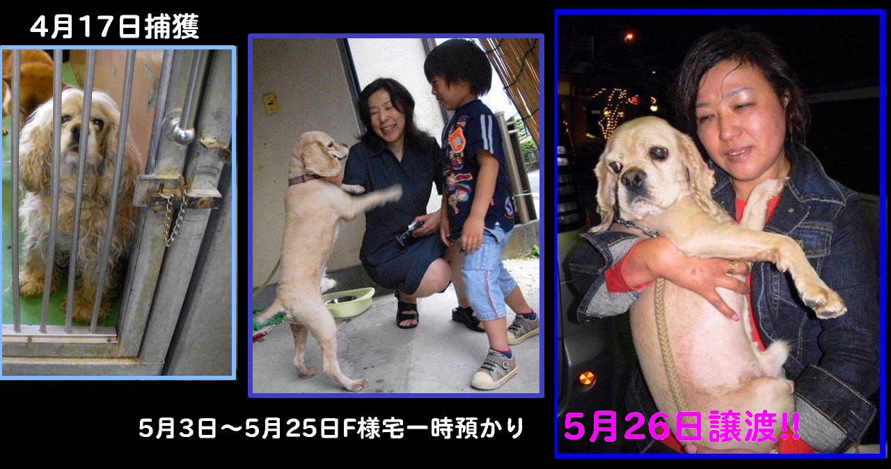 b0072501_838775.jpg