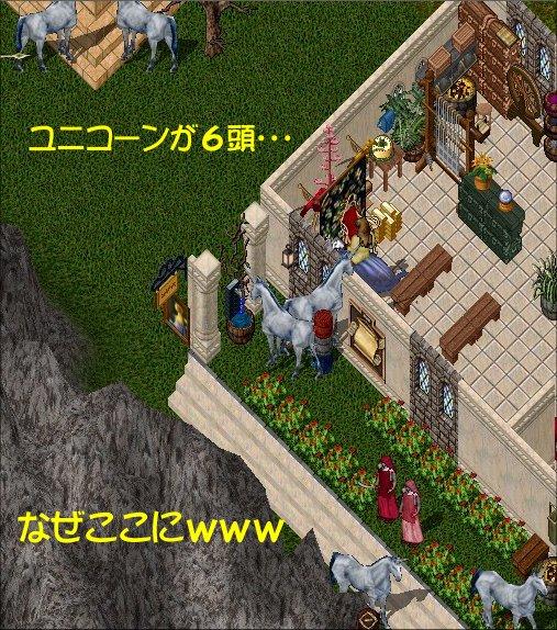 e0027722_1040641.jpg