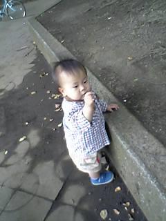 b0053433_6155397.jpg