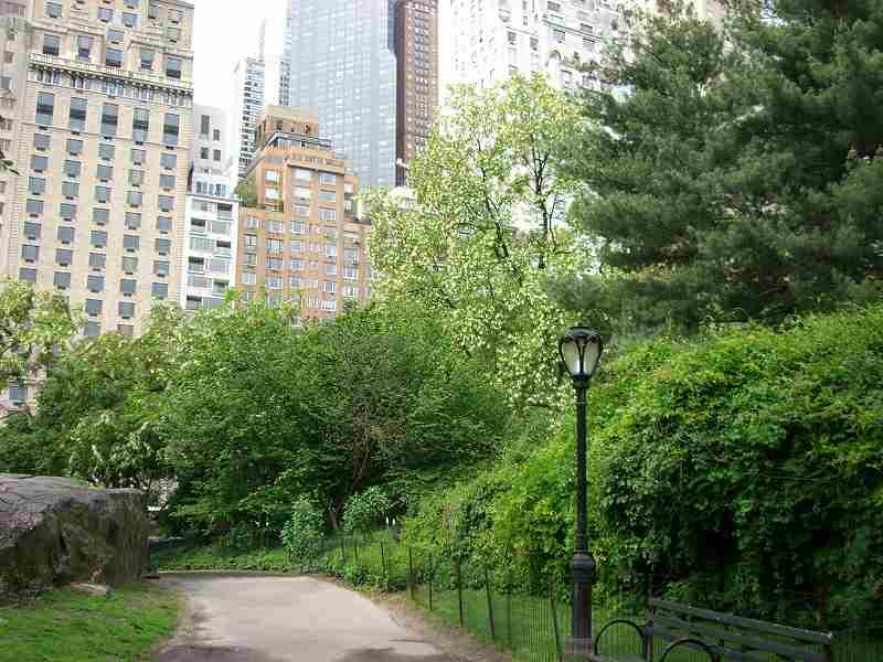 ニューヨーク・ブログ・カフェ・・・。 その4_f0036534_21544628.jpg