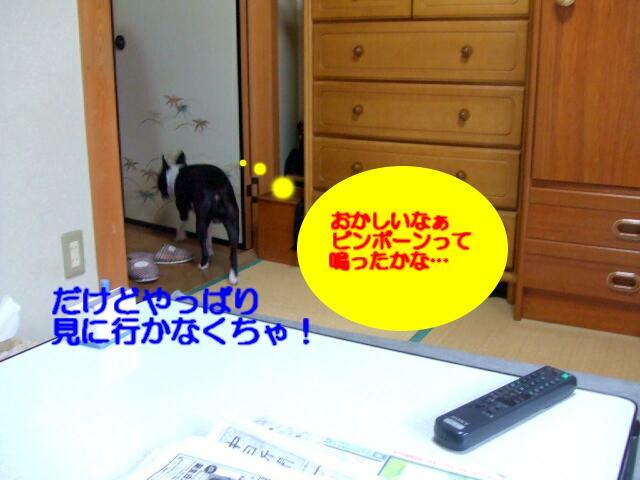 f0059334_8474888.jpg