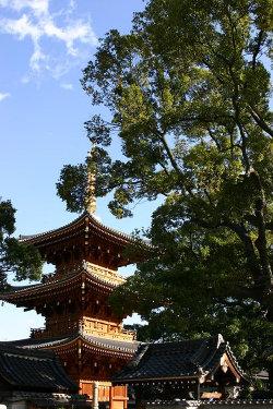 <第三番 紫金山小松院 法楽寺>_a0045381_6545530.jpg