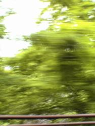 猛スピードで、5月は_d0028589_22325542.jpg