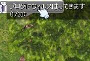 b0098610_16224755.jpg