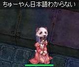 b0098610_16444443.jpg