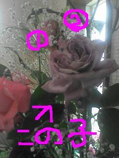 f0063642_2032319.jpg