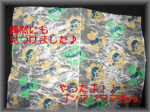 e0085147_0371858.jpg