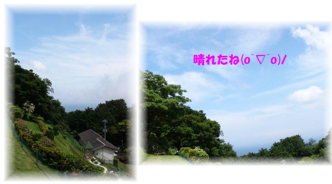 f0039907_21314641.jpg