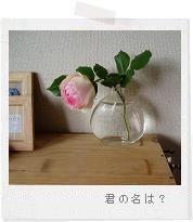 d0046813_8222146.jpg