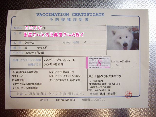 ワクチンの日_c0062832_20553781.jpg