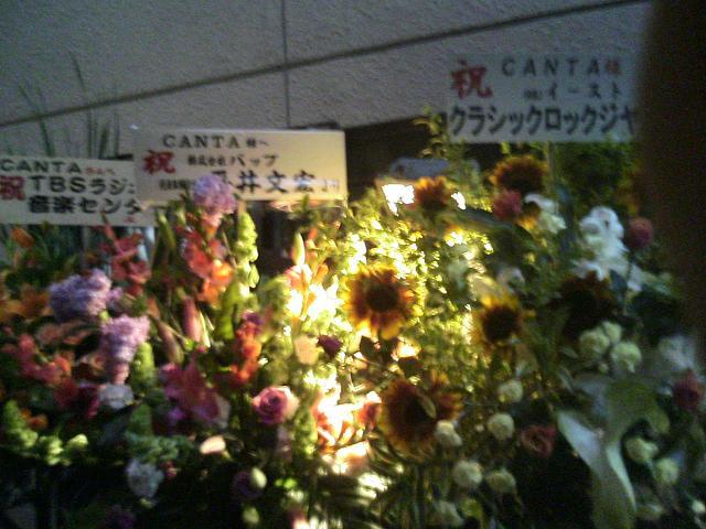 CANTA in 渋谷O-WEST_e0013944_1451314.jpg