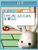 b0012145_051116.jpg