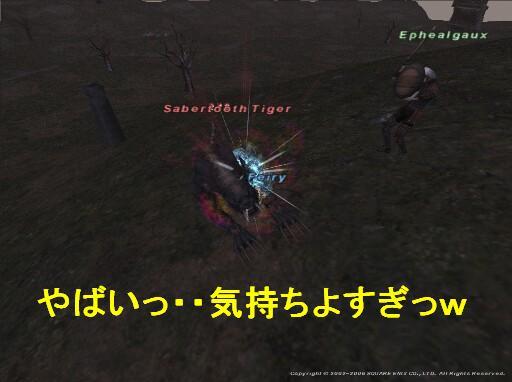 フェローと遊ぼう_f0063726_1959146.jpg