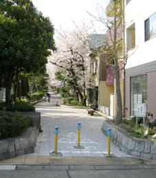 達人への道:12_e0041354_711639.jpg