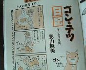 アトリエKotori広報部からのお知らせ。_b0011075_14331992.jpg