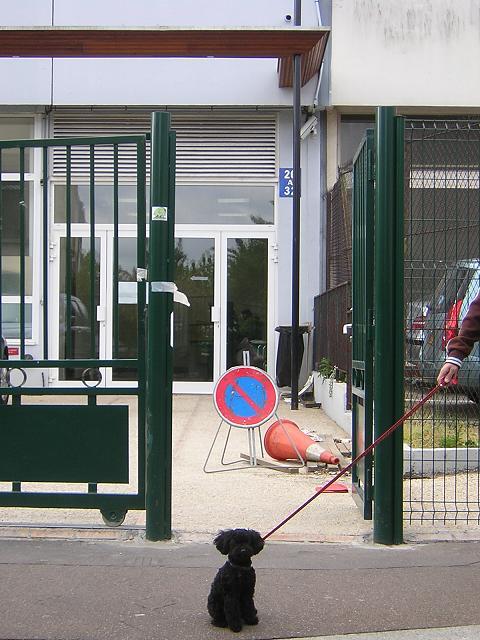 パリのお役所。_b0083925_14165263.jpg