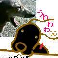 b0108053_642328.jpg