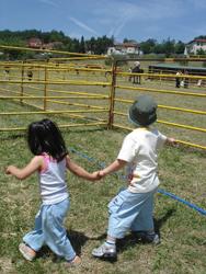 再び牛祭り_f0106597_1455023.jpg