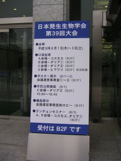 広島2日目_c0025115_0185676.jpg