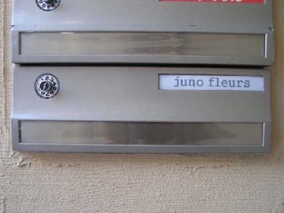 Juno fleurs様_b0105987_128675.jpg