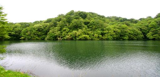白神山麓の十二湖の新緑4:水と新緑_e0054299_19958.jpg