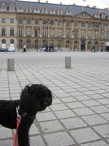 パリを歩けば♪_b0083925_1285226.jpg