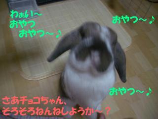 b0109692_1633313.jpg