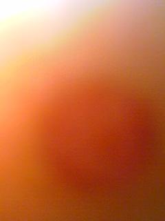 e0005740_12492736.jpg