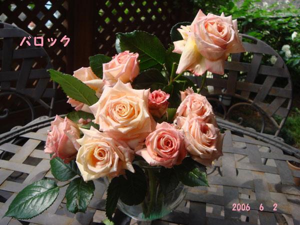 f0057006_13385213.jpg