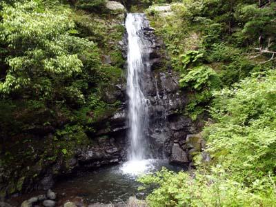 和泉葛城山へ(1)_c0024167_6431485.jpg
