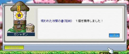 f0108568_029038.jpg