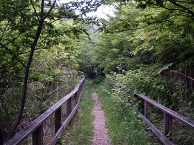 和泉葛城山へ(2)_c0024167_8454498.jpg